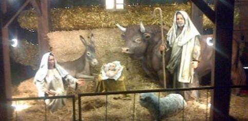 """bb3b6a6ee91 """"¿Se acuerdan de que ayer el cardenal (Mario) Poli me había comentado que  el árbol de navidad de la Casa Rosada no tenía pesebre  Bueno"""