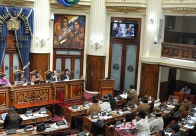 Bolivia: En medio de una profunda crisis institucional, el Senado debate el llamado a elecciones